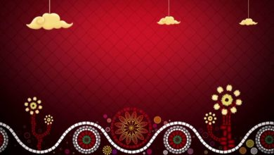 Free HD Wedding background, Free download motion background, Free video CHILD 017