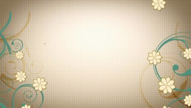 Free Wedding background, Free Hd motion graphics, Download video Animation - VECTOR 009