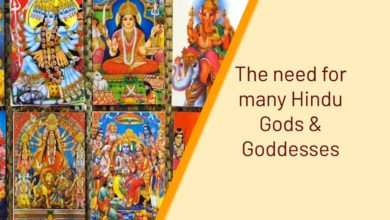 The need for many Hindu Gods & Goddesses