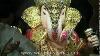 Festival of the elephant-headed Hindu god | Ganesh Chaturthi