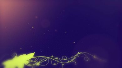 Free download Wedding background, Free Hd motion graphics, wedding graphics animation - VECTOR 011