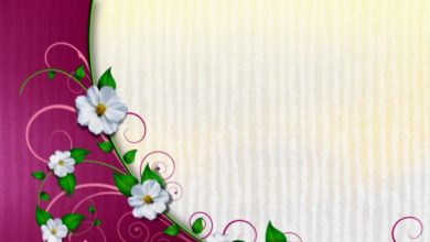 Free Wedding background, Free Hd motion graphics, Download video Animation - VECTOR 008