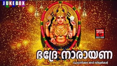 Hindu Devotional Songs Malayalam | ഭദ്രേ നാരായണ | Chottanikkara Amma Devotional Songs