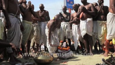 Holy men of Hinduism - worship along the Ganges river