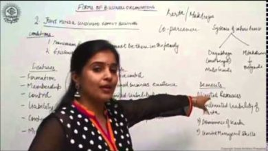 Joint Hindu Family Business - CBSE Class XI Business Studies by Ruby Singh