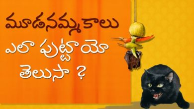 Traditional  Superstition Beliefs|Traditional Indian religion |Science Behind Indian Culture  Telugu