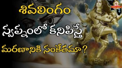 శివలింగం స్వప్నంలో కనిపిస్తే మరణానికి సంకేతమా? Shiva lingam in dream Meaning- Lord Shiva in dreams?