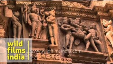 Complex sexual positions portrayed in the Khajuraho monuments
