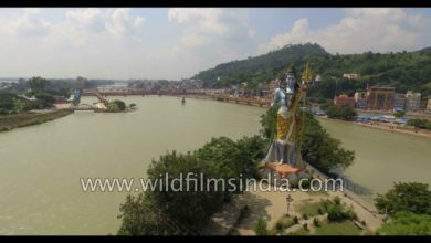 Fly over giant Shiva statue at Haridwar : aerial view of Hinduism central