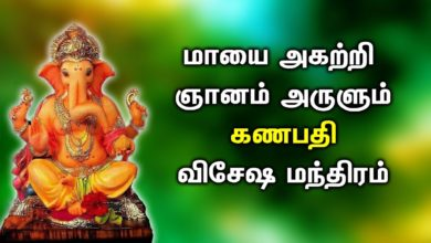 LORD GANESHA POWERFUL SONGS  | Powerful Ganapathi Padalgal | Best Pillaiyar Devotional Songs