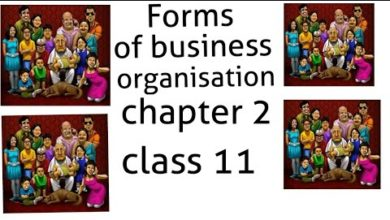 #2 joint hindu family Forms of business organisations chapter 2 class 11