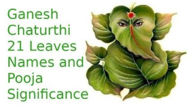Ganesh Chaturthi 21 Leaves Names & Pooja Significance