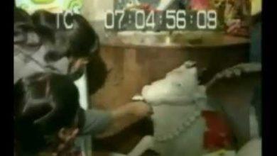 Hindu Milk Miracle Video 1