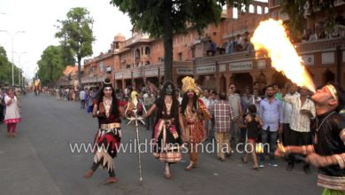 Lord Shiva and Goddess Kali pose for camera during Gangaur festival