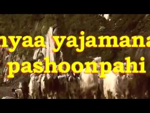 Myth of Holy Cow and Beef in Vedas and  Hinduism.