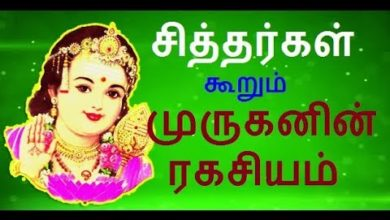 Power of  Murugan | meaning of lord murugan | Muruga is siddhar manthiram