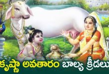 కృష్ణా అవతారం బాల్య క్రీడలు | Lord Krishna Story | Lord Vishnu Krishna Avataram | Devotional TV