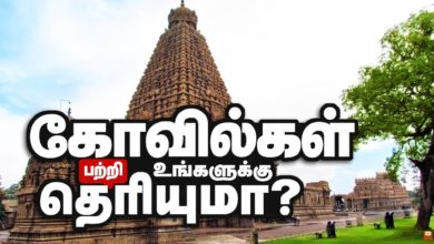 Hindu temples Art History | History of Hinduism | How Indian Temples Were Created | கோவில்கள்