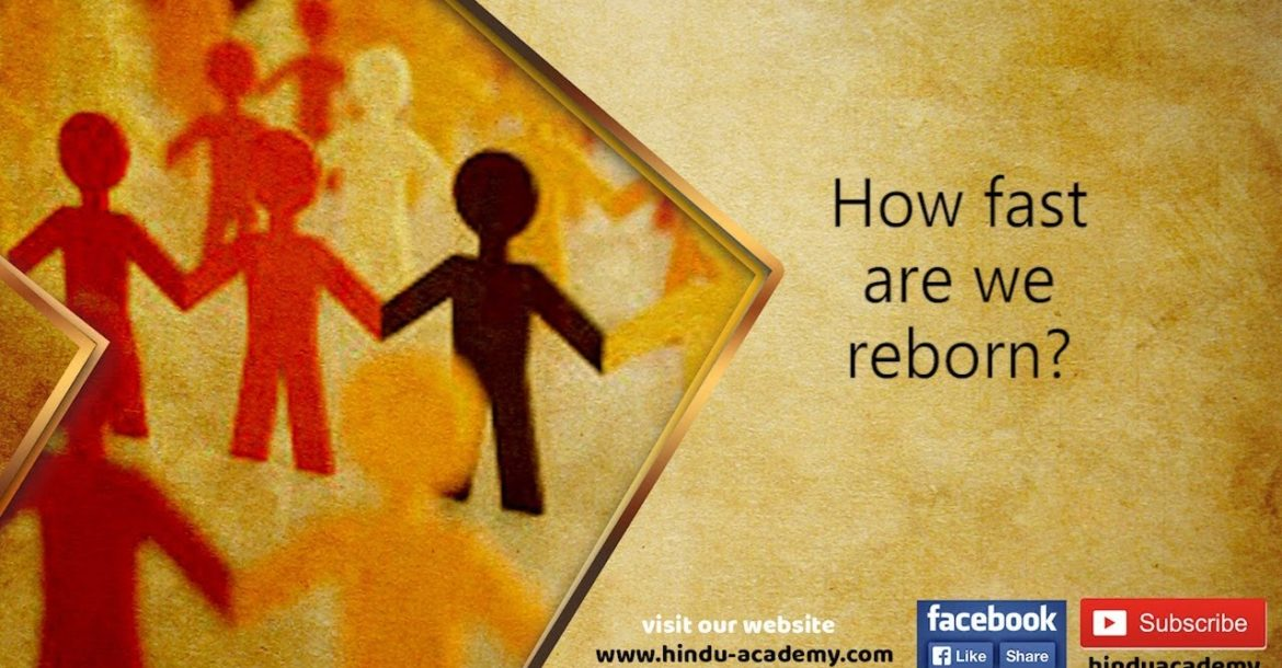 How fast are we reborn? Jay Lakhani | Hindu Academy |