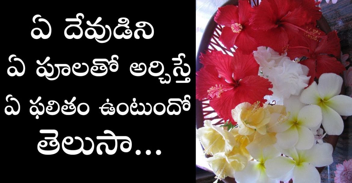 Which flowers offered to hindu gods and goddesses in pooja | Which god to be offered which flower
