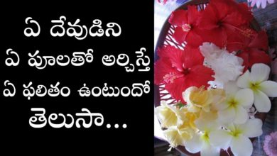 Which flowers offered to hindu gods and goddesses in pooja   Which god to be offered which flower