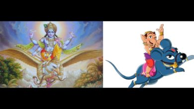 Why do Hindu Gods have animal vehicles ?