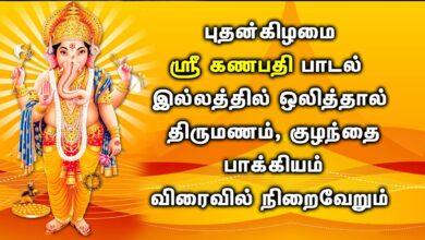 இந்த கணபதி பாடல் திருமணம் மற்றும் குழந்தை பாக்கியத்தை வழங்கும் | Powerful Lord Ganesh Tamil Songs
