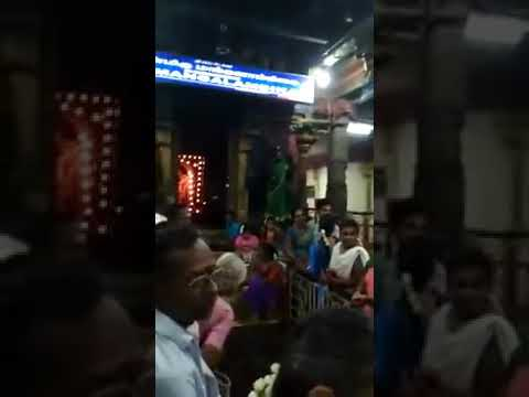 Hindusm Miracles in indian hindu temple elephant worship lord siva crying#lordsivatemple
