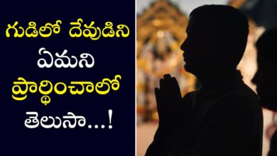 How do you pray in the temple | How to Pray in Hindu Temples | PSLV TV NEWS