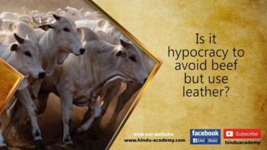 Is it hypocracy to avoid beef but use leather? Jay Lakhani| Hindu Academy |