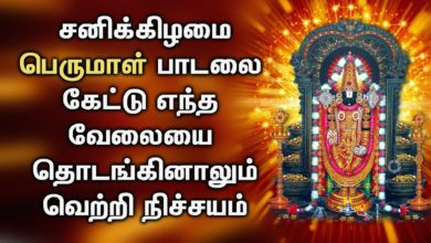 LORD BALAJI WILL  ACCOMPLISH ALL YOUR EFFORTS  AND INITIATIVES | Lord Venkateswara Tamil Songs