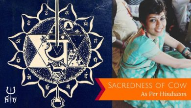 Sacredness of Cow in Hinduism | Hinduism News