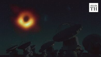 Why is the discovery of the Black Hole important? | The Hindu Explains