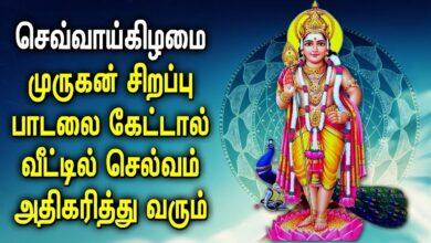 செவ்வாய்கிழமை முருகன் சிறப்பு பாடல்கள் | Lord Muruga | Palani |Kumaran | Best Tamil Murugan Padalgal