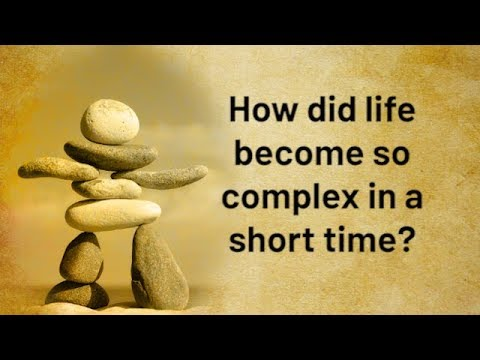 How did life become so complex in a short time? | Jay Lakhani | Hindu Academy