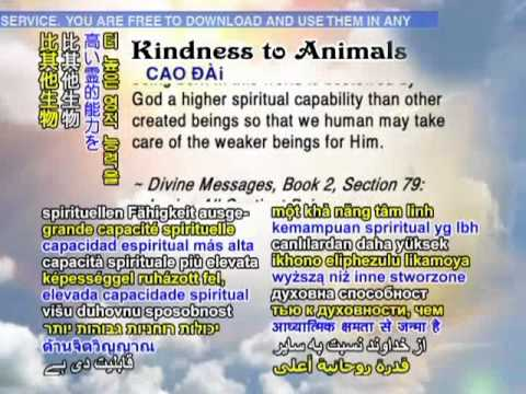 Kindness to Animals in Religions (Islam, Christianity, Hinduism, Buddhism, Sikhism, Baha's Faith)