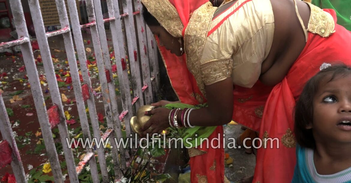 Women perform religious rituals outside at a Shiv Temple in Bihar | Hinduism