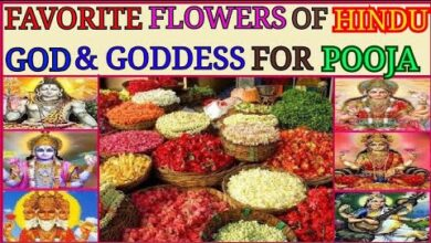"""""""Favourite Flower"""" of Hindu God & Goddess for Pooja/ Worship in English"""