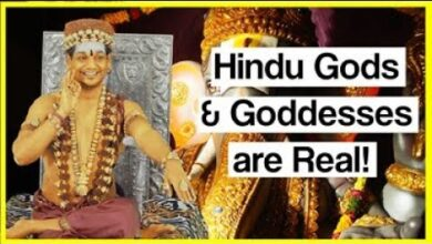 Hindu Gods & Goddesses are Real Cosmic Beings not some Philosophical concept! HDH Nithyananda