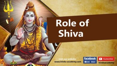 Role of Shiva