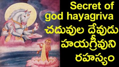 Hayagriva The horse head god avatar | bhagwan vishnu avatar Hayagreeva | god of intelligence
