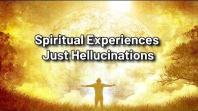 Is spiritual experiences just hellucinations? | Jay Lakhani | Hindu Academy