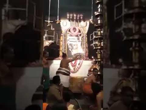 Thanjavur Brihateeswarar Temple. Darshana of Lord Shiva. #hinduism #shiva