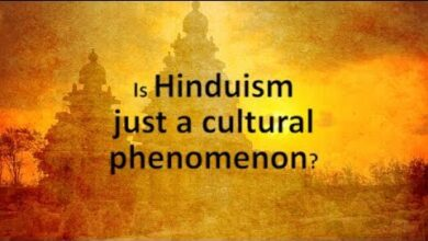 Is Hinduism just a cultural phenomenon? | Jay Lakhani | Hindu Academy