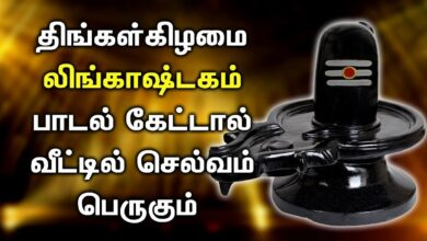 POWERFUL LINGASHTAKAM SONG | Lord Shiva Lingashtakam Padalgal | Best Shivan Tamil Devotional Songs