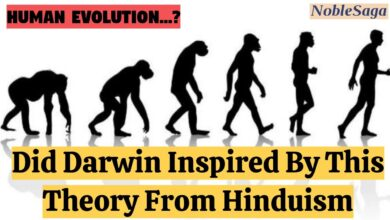 Was Darwin Inspired By This Theory From Hinduism   Human Evolution Theory   Noble Saga