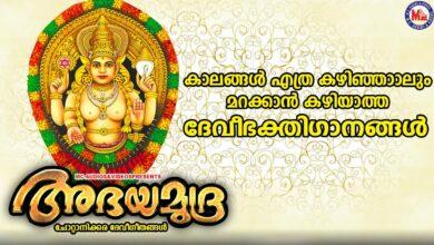 കാലങ്ങൾക്ക് മായ്ക്കാൻ കഴിയാത്ത ദേവീഭക്തിഗാനങ്ങൾ|Devi Devotional Songs|New Devotional Songs Malayalam