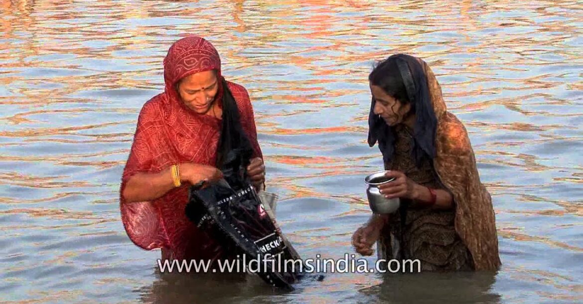 Hindu women pray and take a holy dip in the Ganges river