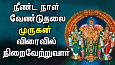 POPULAR MURUGAN SONGS IN TAMIL | Lord Murugan Tamil Padalgal | Best Tamil Devotional Songs