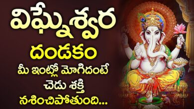 VIGNESHWARA DANDAKAM  || POPULAR BHAKTI SPECIAL SONGS || TELUGU BEST LORD GANESHA SONGS